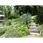 83-Hunterfield-Rd-Prattsville-stone-steps