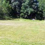 1240-Rt-17b-White-Lake-NY-field