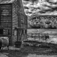 Farm in B&W. By John Leighton.