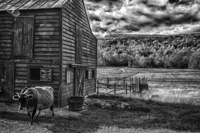 Farm in B&W. By John Leighton.