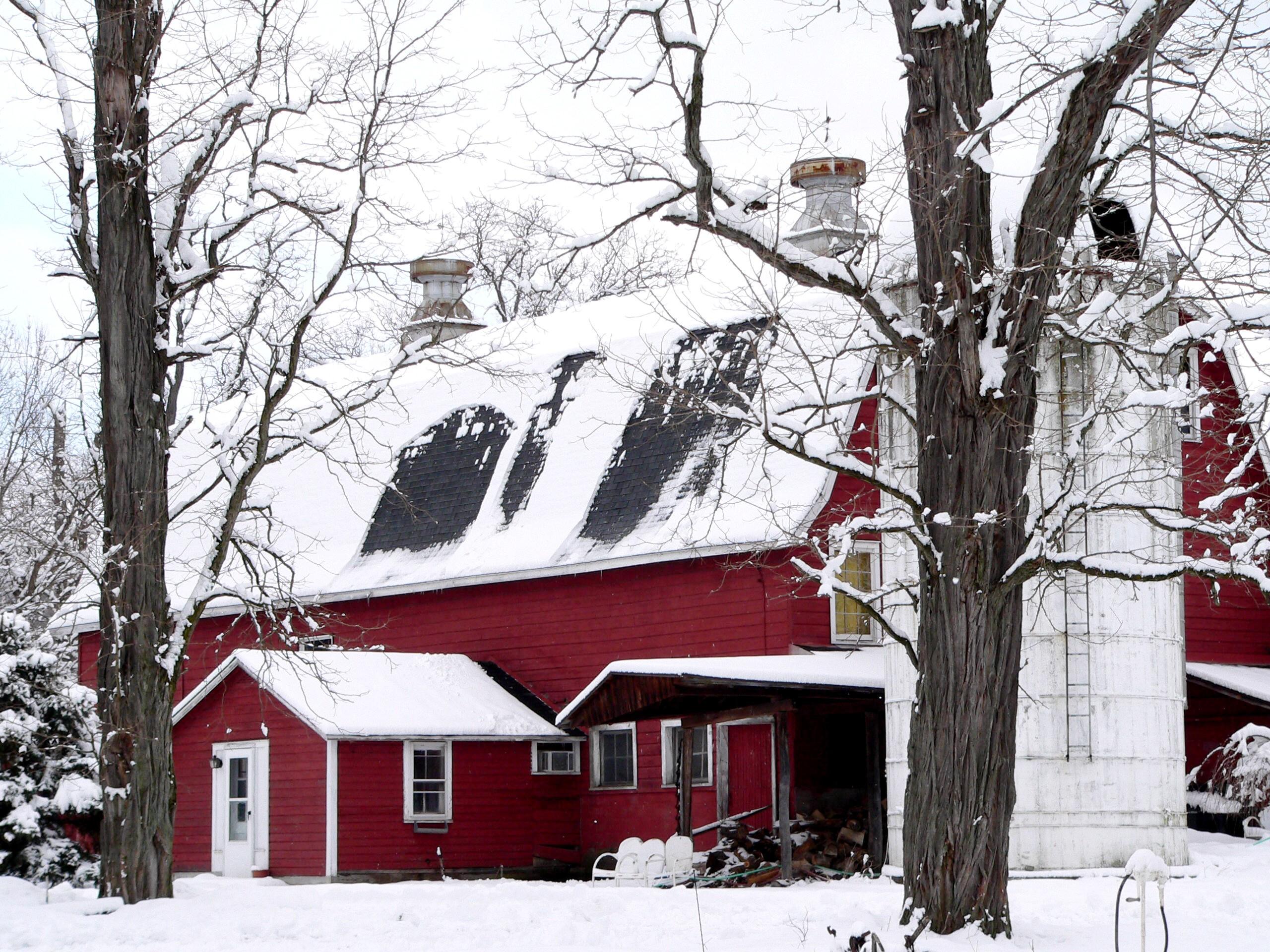 snow barn farm sprout creek