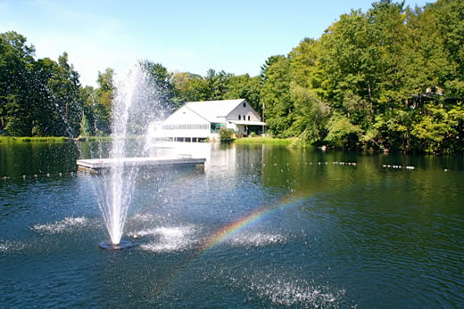 pine-lake-rainbow