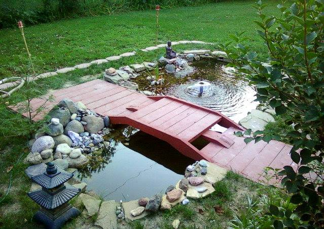susanna's water feature