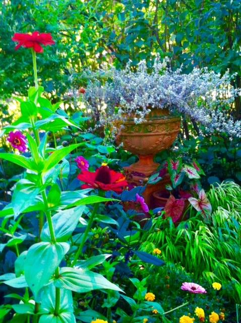 Aesthetics, Textures, and Continuity In Effective Garden Design