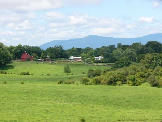Northwind Farm