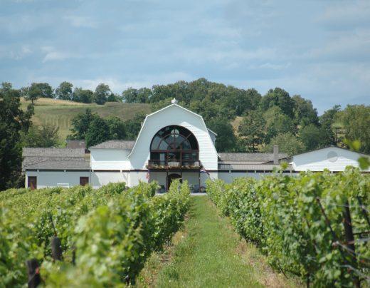 winerywvines-R