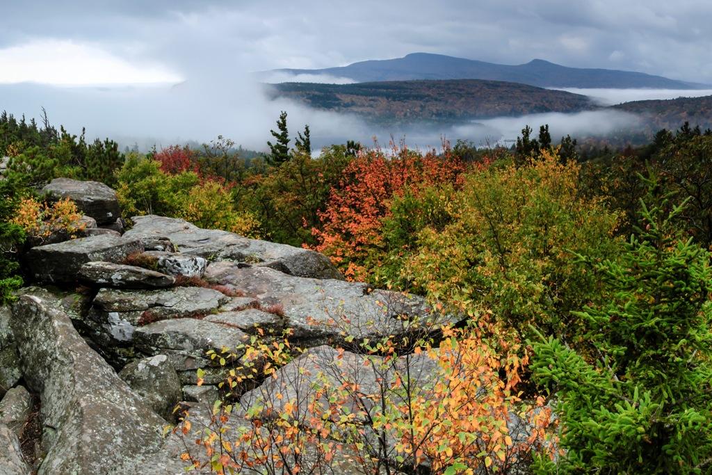 Catskills NY fall foliage hudson valley adirondacks leaf
