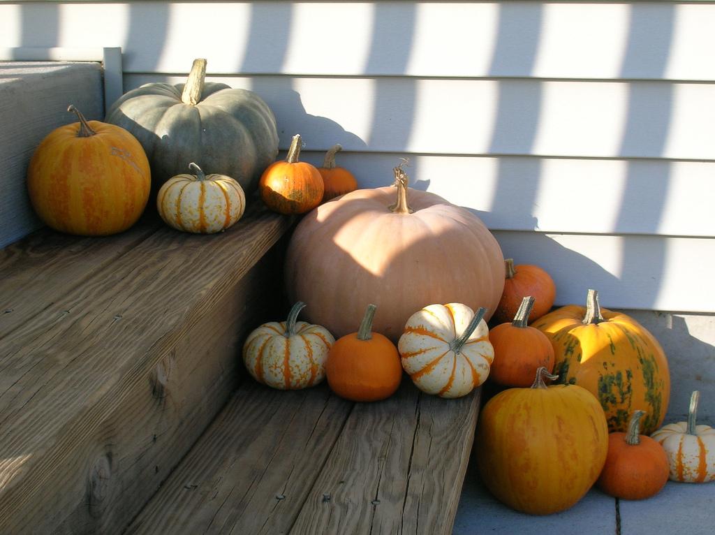 fall activities mid hudson valley