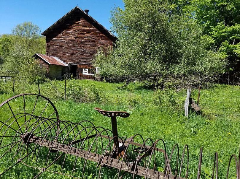 oneonta farm