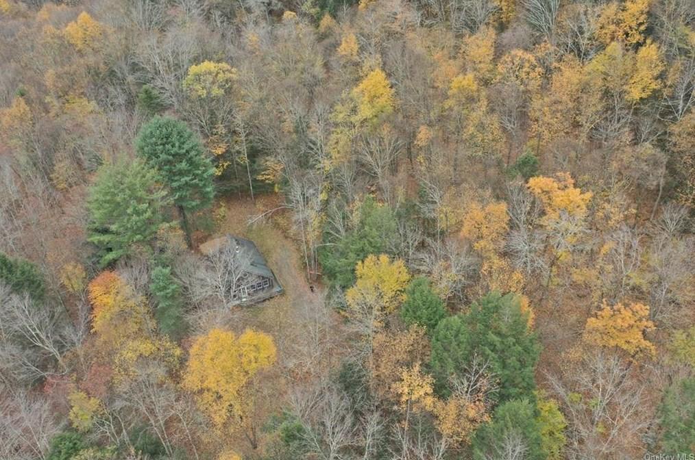 downsville cabin